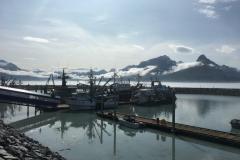 Valdez Hafen am Morgen