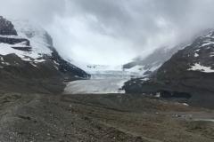 Gletscher am Icefield Parkway. Ist in den letzten 20 Jahren um einige hundert Meter zurück gegangen...traurig, aber wahr